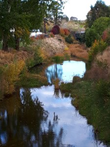 Clunes Autumn Creed